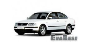 Volkswagen Passat B5 plus (2000-2005)