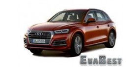 Audi Q5 ll (2017-...)